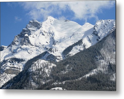 Winter Metal Print featuring the photograph Winter Wonderland by Tiffany Vest