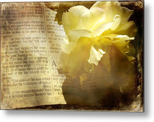 Book Metal Print featuring the photograph Wise Words by Rozalia Toth