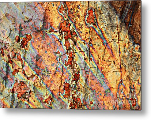 Rust Metal Print featuring the photograph Wood And Rust by Carol Groenen