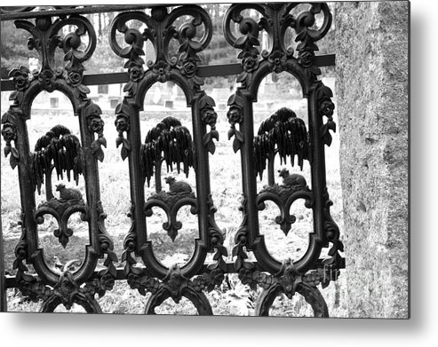 Gate Metal Print featuring the photograph Wrought Iron Gate -west Epping Nh Usa by Erin Paul Donovan