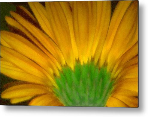 Metal Print featuring the photograph Yellow by Andre Giovina