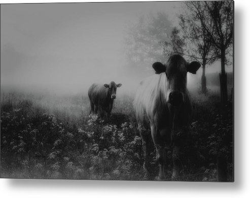 Landscape Metal Print featuring the photograph Foggy Memory Of The Past by Saskia Dingemans