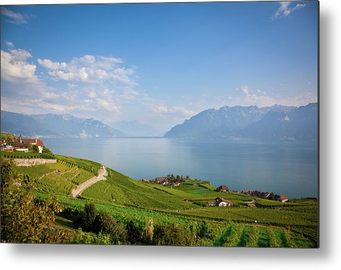 Alcohol Metal Print featuring the photograph Vineyards Around Lake Leman by Onfokus