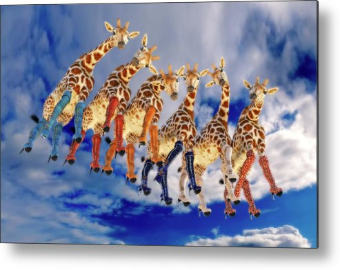 Surreal Metal Print featuring the digital art Curious Giraffes by Betsy Knapp