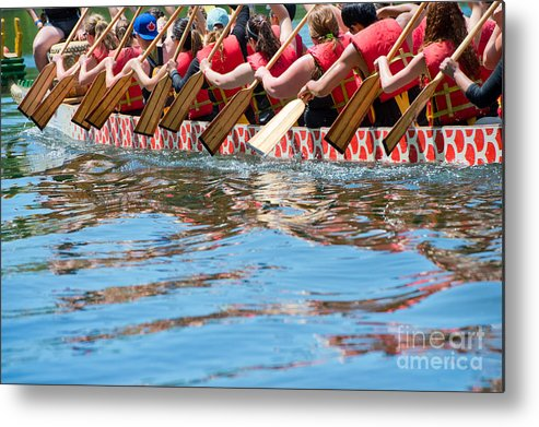 Muscular Metal Print featuring the photograph Dragon Boat by Oceanfishing