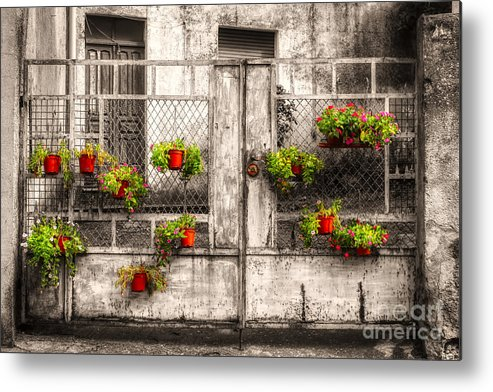 Sardegna Metal Print featuring the photograph Fenced Flowers by Phil Cappiali Jr
