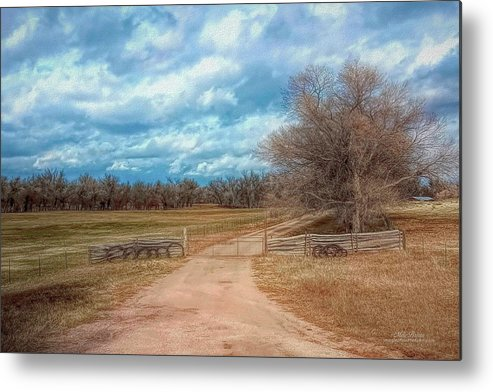 Colorado Metal Print featuring the photograph Home On The Range by Mike Braun