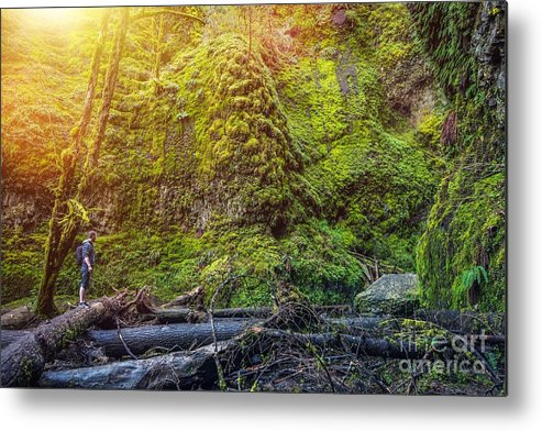 Specie Metal Print featuring the photograph Oregon Mossy Gorge Hiker. Young Hiker by Welcomia