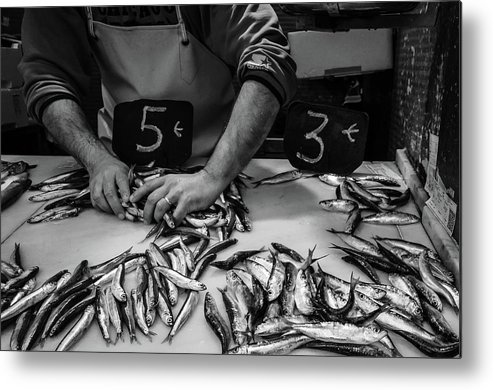 Fishes Metal Print featuring the photograph Sardineando by Borja Robles