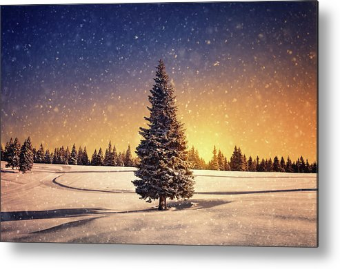 Scenics Metal Print featuring the photograph Winter Sunset by Borchee
