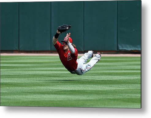 American League Baseball Metal Print featuring the photograph Collin Cowgill by Sarah Crabill