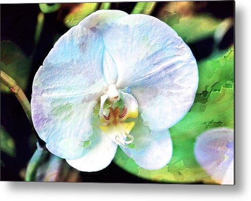 Orchid Metal Print featuring the photograph White Orchid by Joyce Baldassarre