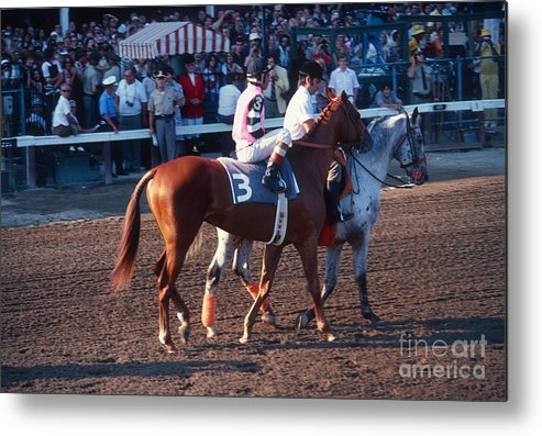 Affirmed Metal Print featuring the photograph Affirmed by Marc Bittan