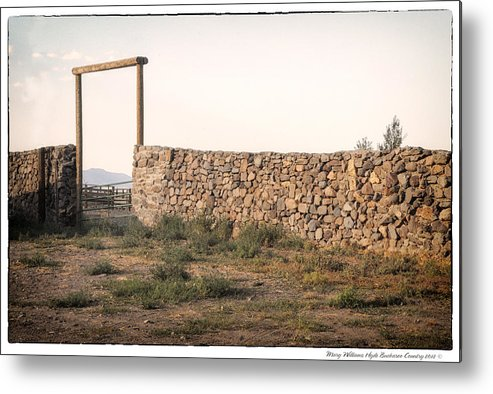 Metal Print featuring the photograph 6358 by Mary Williams Hyde