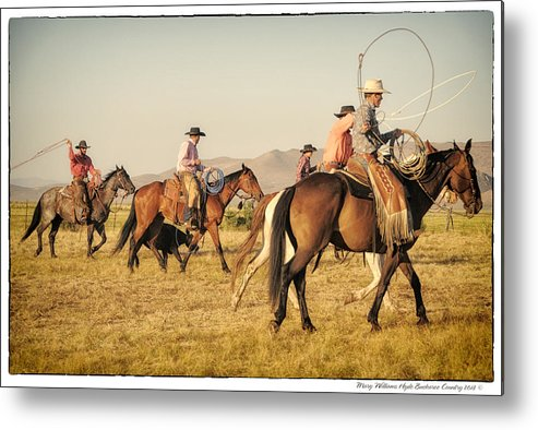 Metal Print featuring the photograph 6912 by Mary Williams Hyde