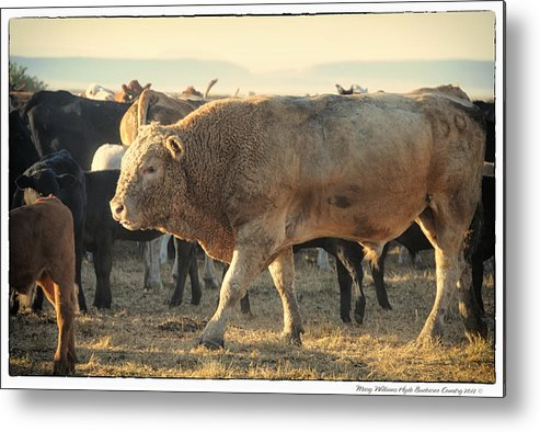 Metal Print featuring the photograph 6924 by Mary Williams Hyde