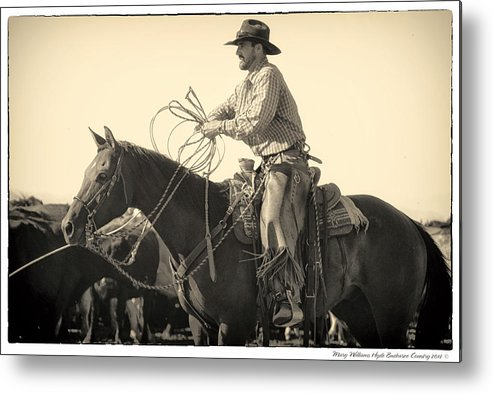 Metal Print featuring the photograph 8510 by Mary Williams Hyde