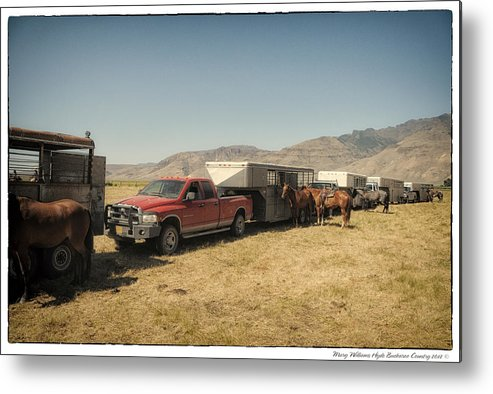 Metal Print featuring the photograph 8978 by Mary Williams Hyde