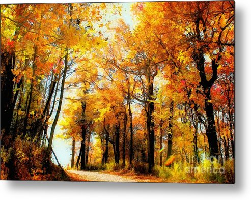 Autumn Leaves Metal Print featuring the photograph A Golden Day by Lois Bryan