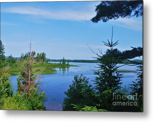 Metal Print featuring the photograph Adk2012 35 by TSC Photography Timothy Cuffe Jr