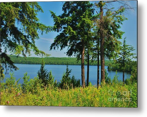 Metal Print featuring the photograph Adk2012 38 by TSC Photography Timothy Cuffe Jr