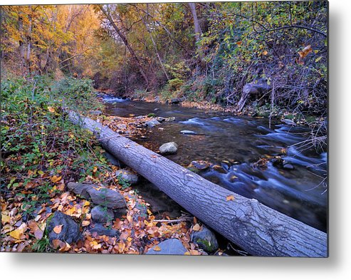 River Metal Print featuring the photograph Genil River by Guido Montanes Castillo