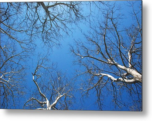 Blue Sky Metal Print featuring the photograph Blue Sky by Valerie Tull