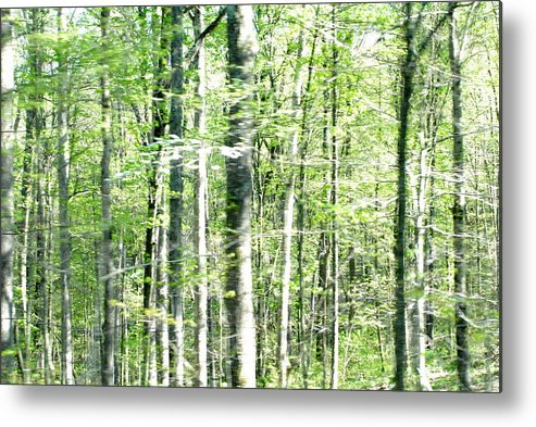 Landscape Metal Print featuring the photograph Blurred Trees Spring-1 by Libby Saunders