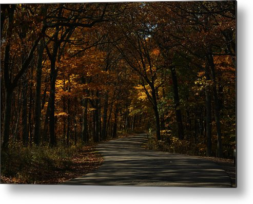 Brown County State Park Metal Print featuring the photograph Brown County State Park by Dan McCafferty