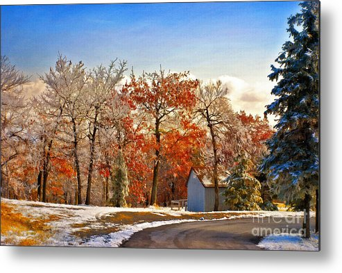 Landscape Metal Print featuring the photograph Change Of Seasons by Lois Bryan