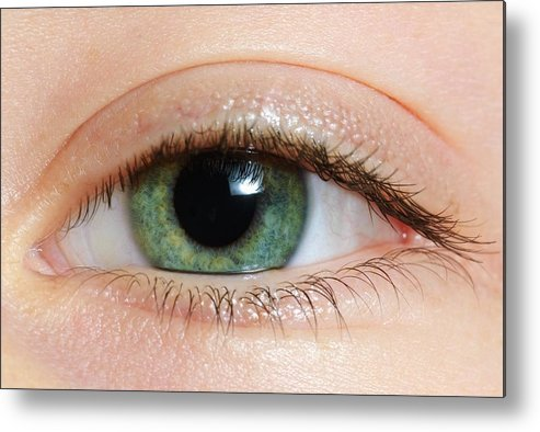 Caucasian Appearance Metal Print featuring the photograph Closeup Of A Green Eye by Ben Welsh