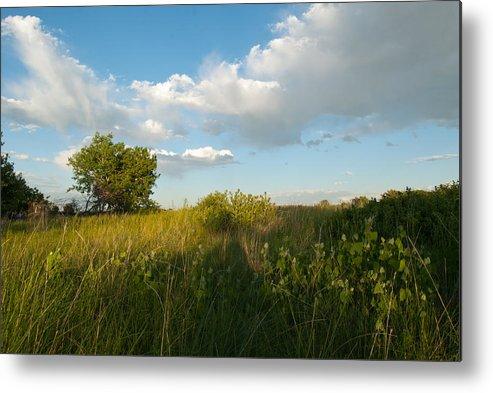 Landscape Metal Print featuring the photograph Colorado June Evening Landscape by Cascade Colors