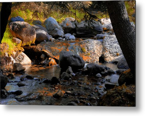 Fall Metal Print featuring the photograph Colors Changing by Paul Beckelheimer