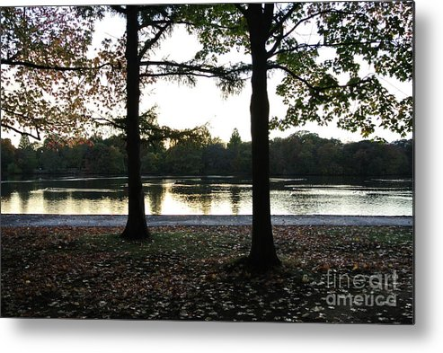 Trees Metal Print featuring the photograph Duet Silhouette by Charlotte Stevenson