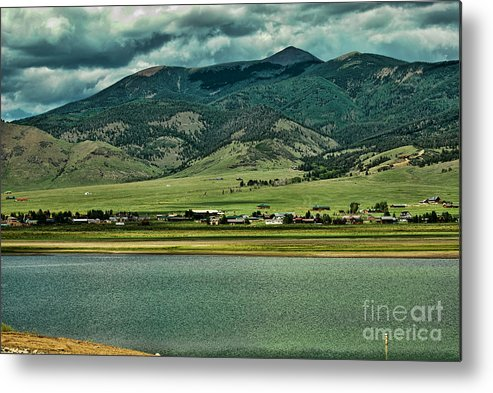 Nature Metal Print featuring the photograph Eagle Nest by Pamela Bycraft