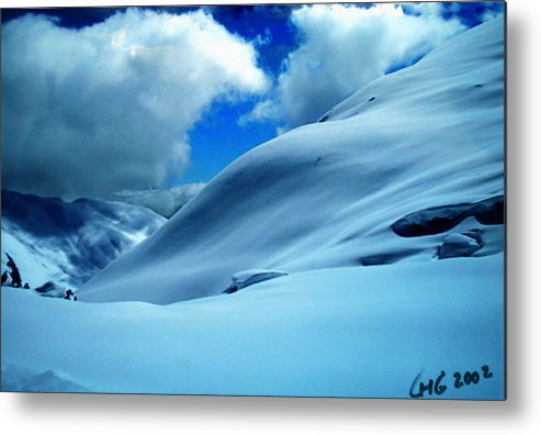 Colette Metal Print featuring the photograph Eye Catcher In Snow by Colette V Hera Guggenheim