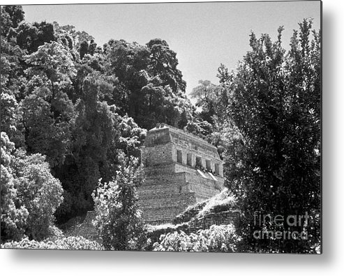 Mexico Metal Print featuring the photograph Glowing Temple Palenque Mexcio by John Mitchell