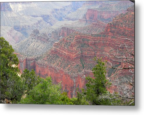 North Rim Metal Print featuring the photograph Grnd Canyon by Russell Walker
