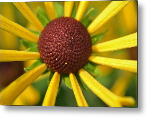 Happy Metal Print featuring the photograph Happy by Adam Barksdale