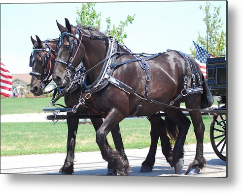 Horses Metal Print featuring the photograph Honored Duty by Wanda Jesfield