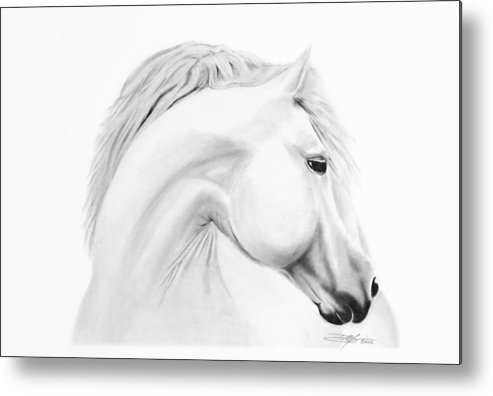 Horse Metal Print featuring the drawing Horse by Don Medina