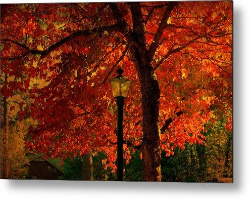 Autumn Metal Print featuring the photograph Lantern In Autumn by Susanne Van Hulst