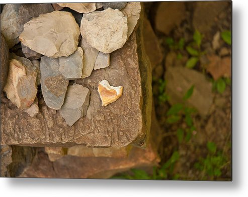 Hearts Metal Print featuring the photograph Lonely Heart by Lena Wilhite