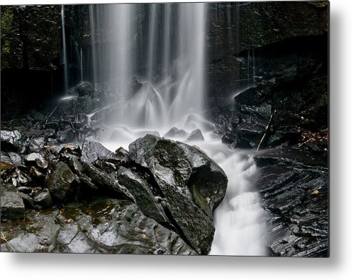 Metal Print featuring the photograph Lwv20052 by Lee Wolf Winter