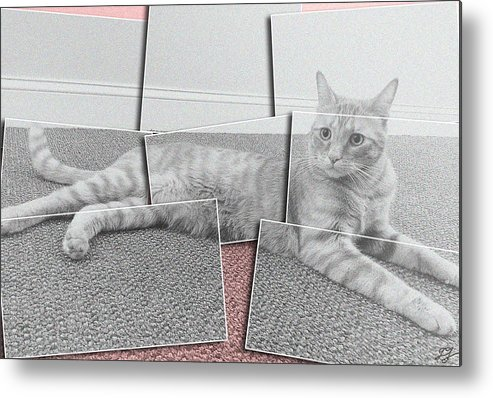 Kitten Metal Print featuring the mixed media Peanut Butter by Michelle Hoshino
