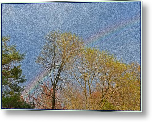 Colourful Spring Metal Print featuring the photograph Rainbow In Spring by Sonali Gangane