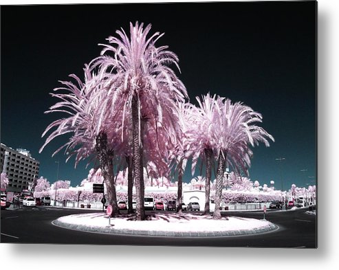 Pink Metal Print featuring the photograph Rosa Palms by George Barker
