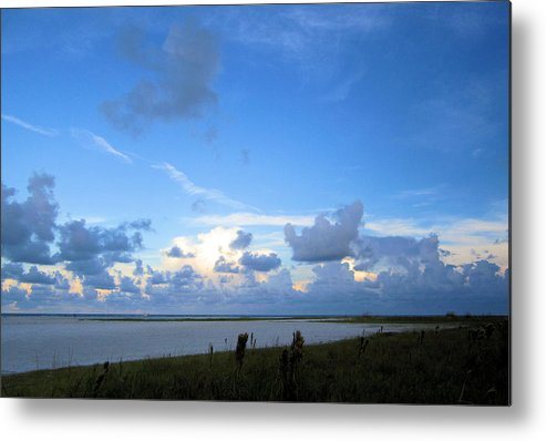 Metal Print featuring the photograph Sb20 by Pepsi Freund