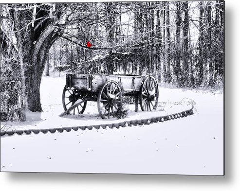 Winter Scene. Winter Landscape. Snow Landscape. Black And White. Birds Metal Print featuring the photograph Snow Bound by Mary Timman