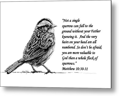Sparrow Metal Print featuring the drawing Sparrow Drawing With Scripture by Janet King